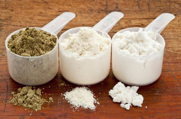 best protein powder for building muscle and losing weight