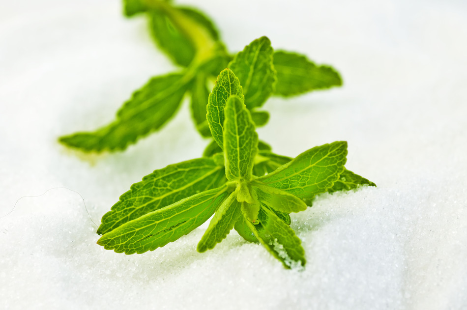 Use Stevia as a Zero-Calorie Sweetener with Benefits