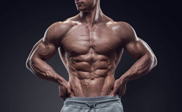 cardio muscle building