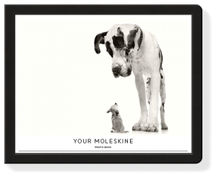 moleskin photo book