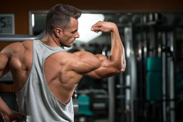 bodyweight workout plan for beginners