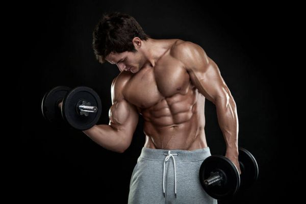 how much protein to build muscle for men