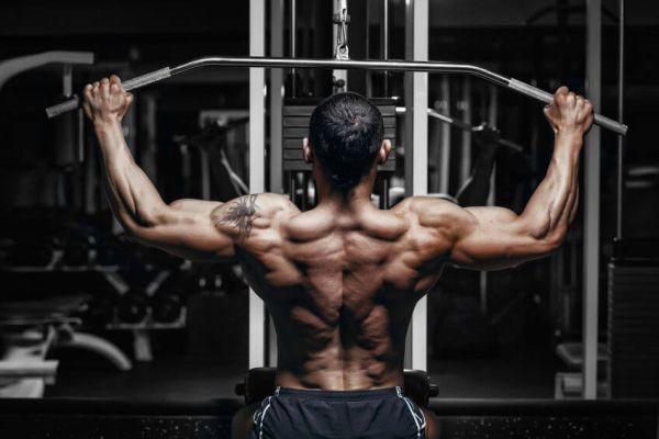 how to maintain muscle when not working out