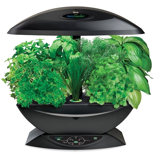 aerogarden-with-herb