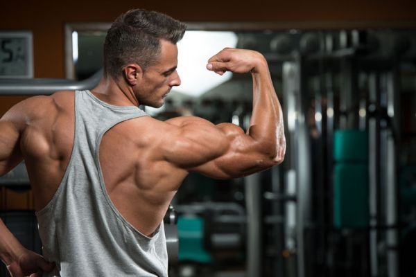 best shoulder workout routine