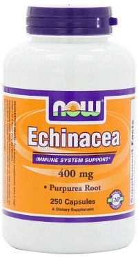 now-echinacea