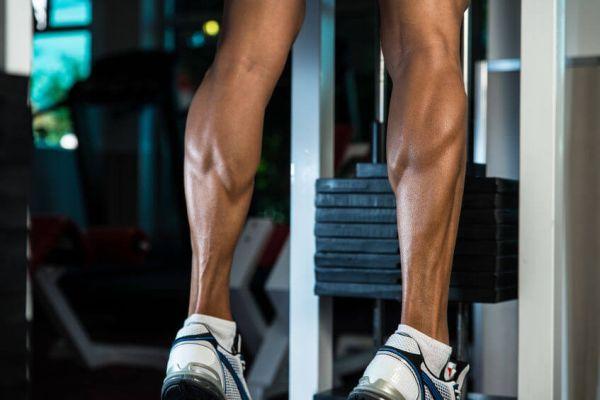 build exercise routine