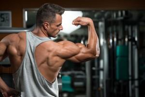 build-bigger-muscles