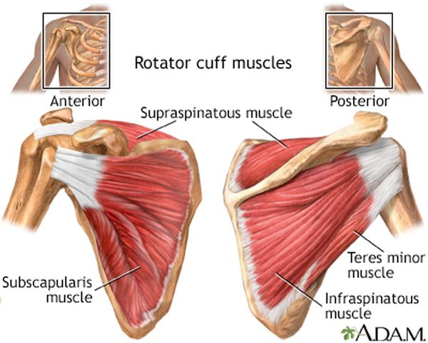 shoulder joint pain causes
