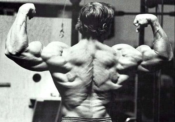 best back exercises bodybuilding