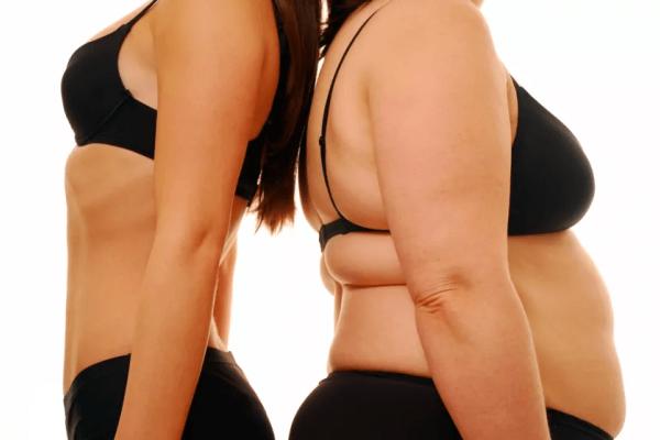 reducing visceral fat