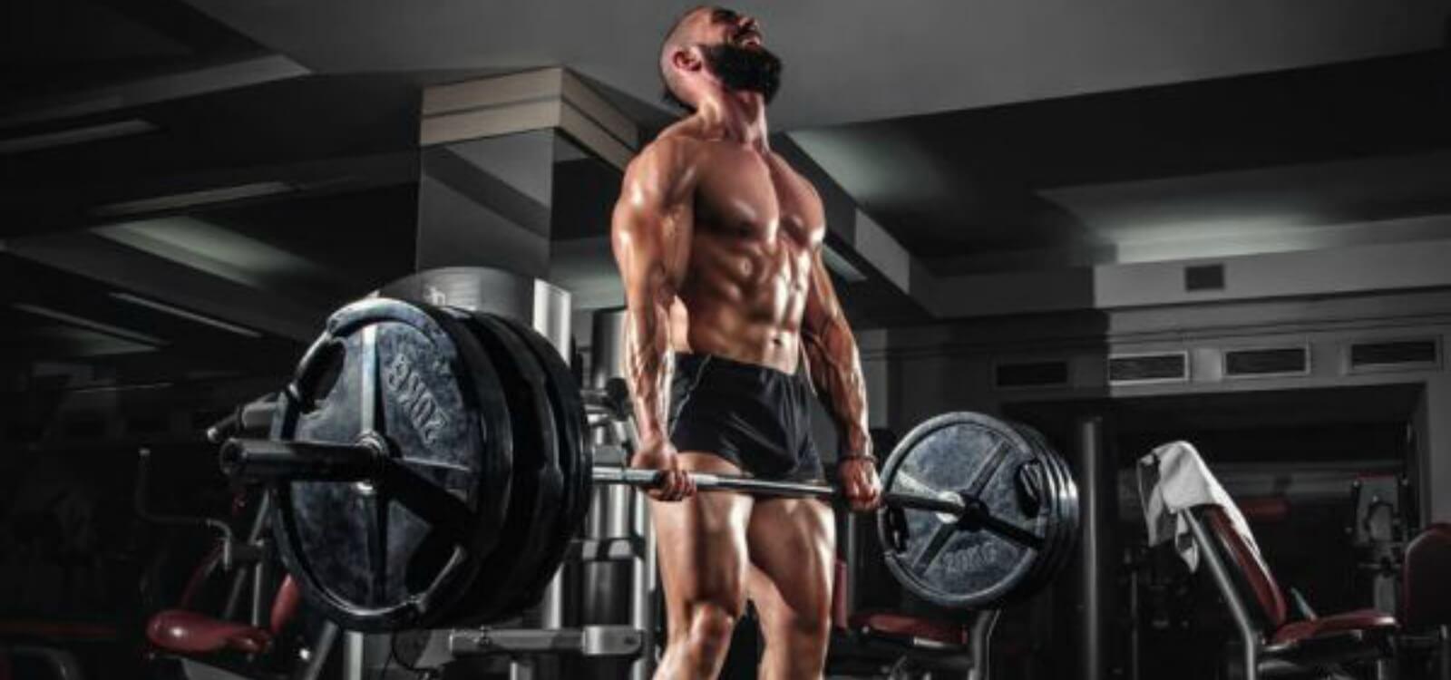 one rep max calculator bodybuilding