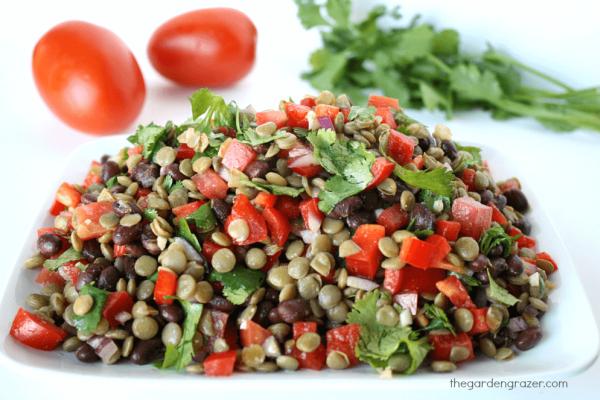 high protein lentil salad recipe