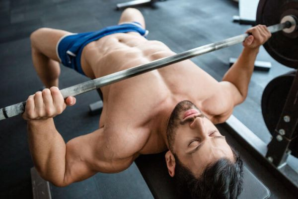 muscle building workout routines