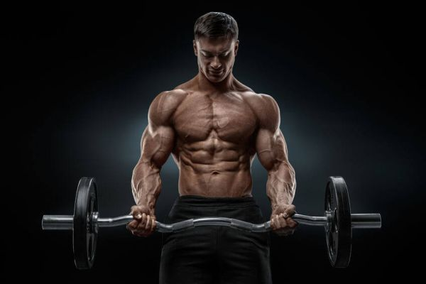 How Many Grams of Fat Per Day to Gain Muscle