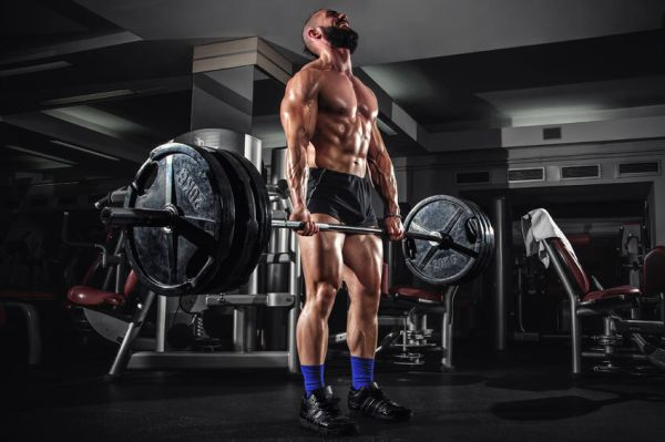 build muscle mass lose fat