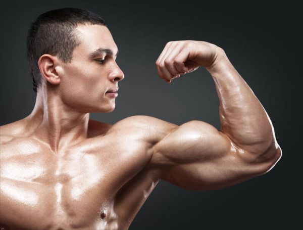 lose stomach fat gain muscle