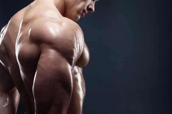gain muscle without fat bodybuilding