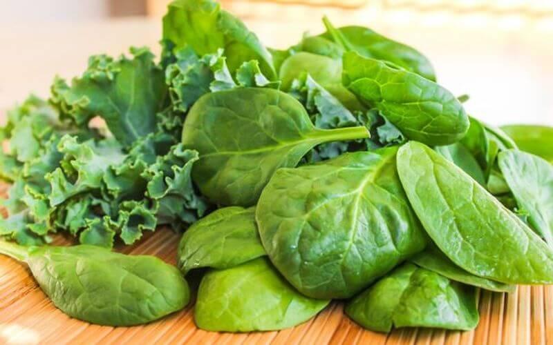 greens supplements greens blend