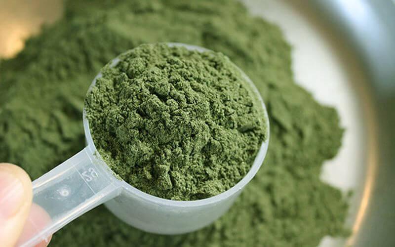 greens supplements reviews