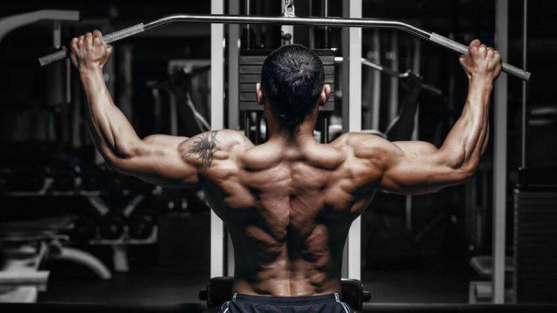 meal planning bodybuilding