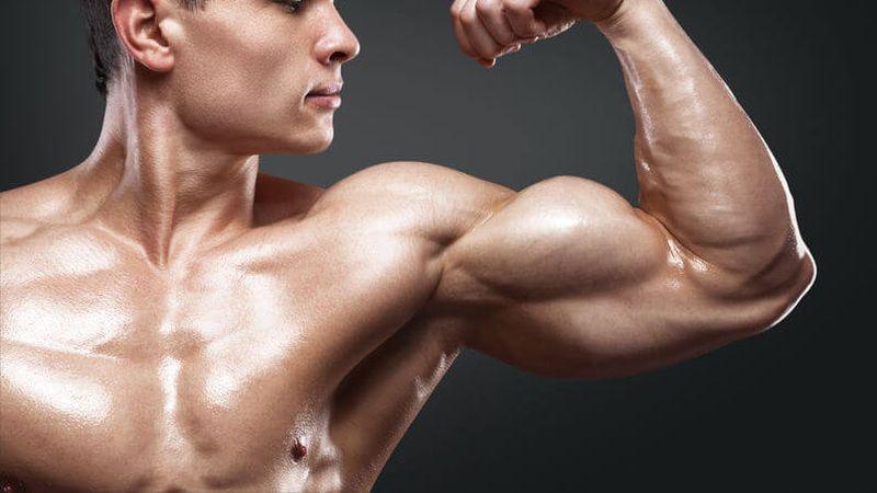 vegan bodybuilding protein