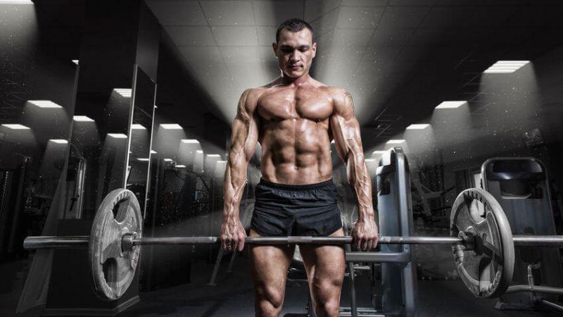 vegan weight lifting
