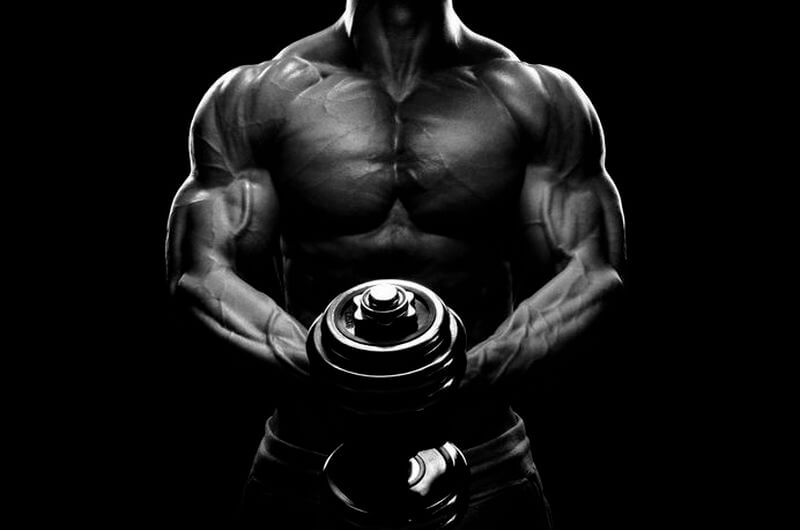protein timing myth