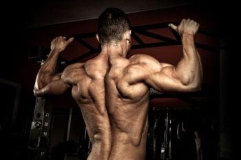 bigger stronger back workout