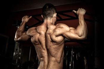 bigger stronger back workout