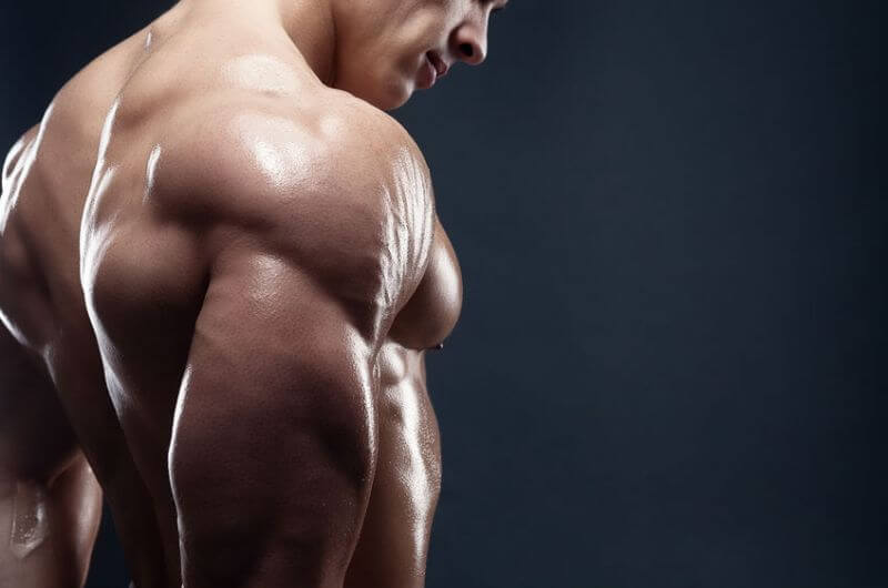 how to get bigger and stronger muscles