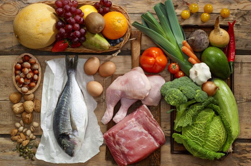 Animal Protein vs. Plant Protein: Which Is Best for Building Muscle?