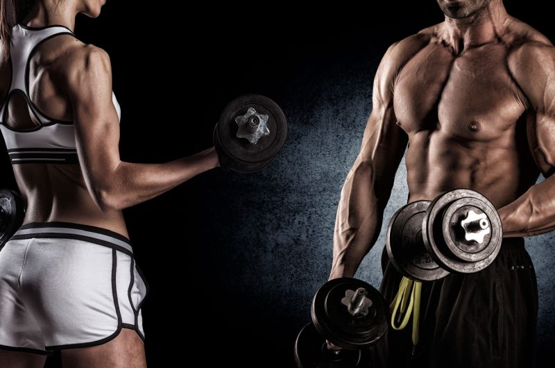 male female muscle definition