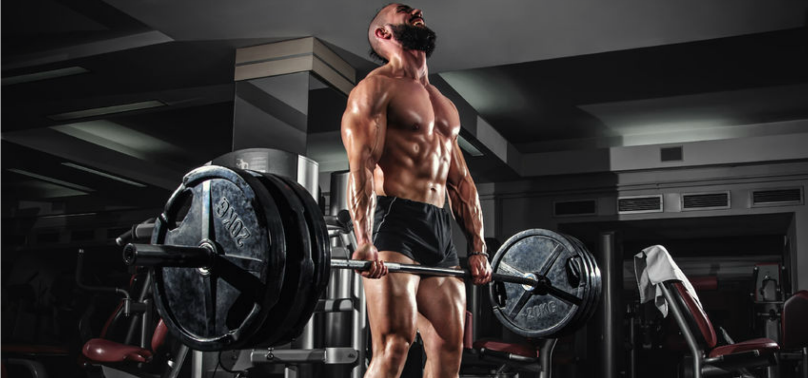 strength standards deadlift