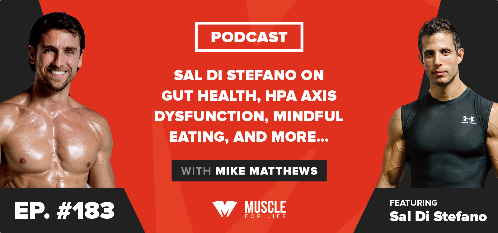Sal Di Stefano on Gut Health, HPA Axis Dysfunction, Mindful Eating, and More…