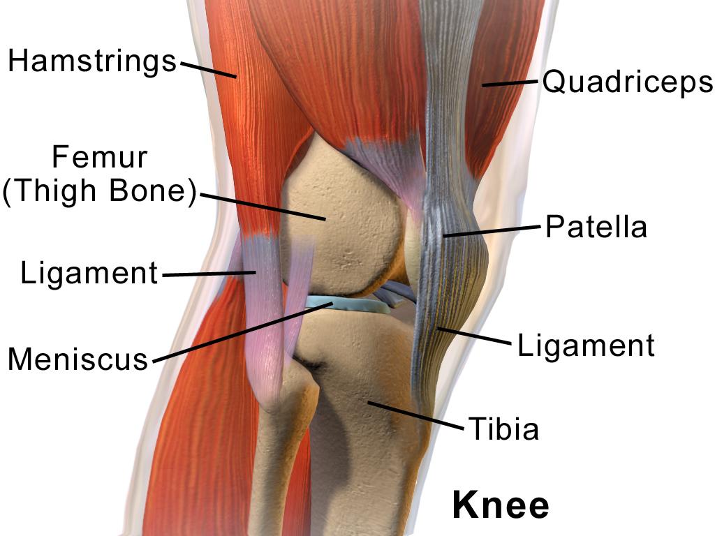 knee pain outside