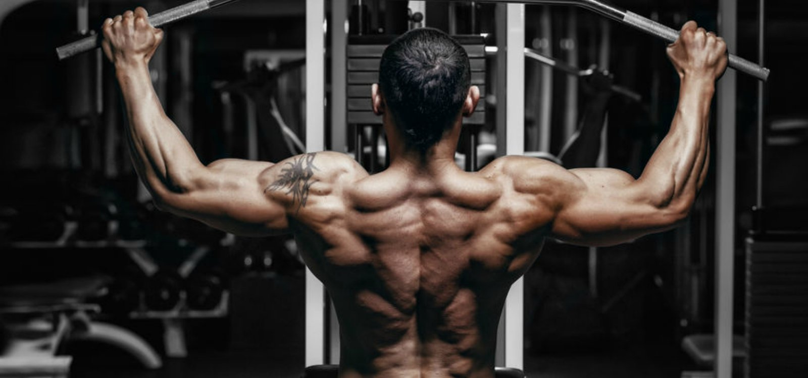 3 Science-Based Back Workouts for More Hypertrophy, Power, and Strength