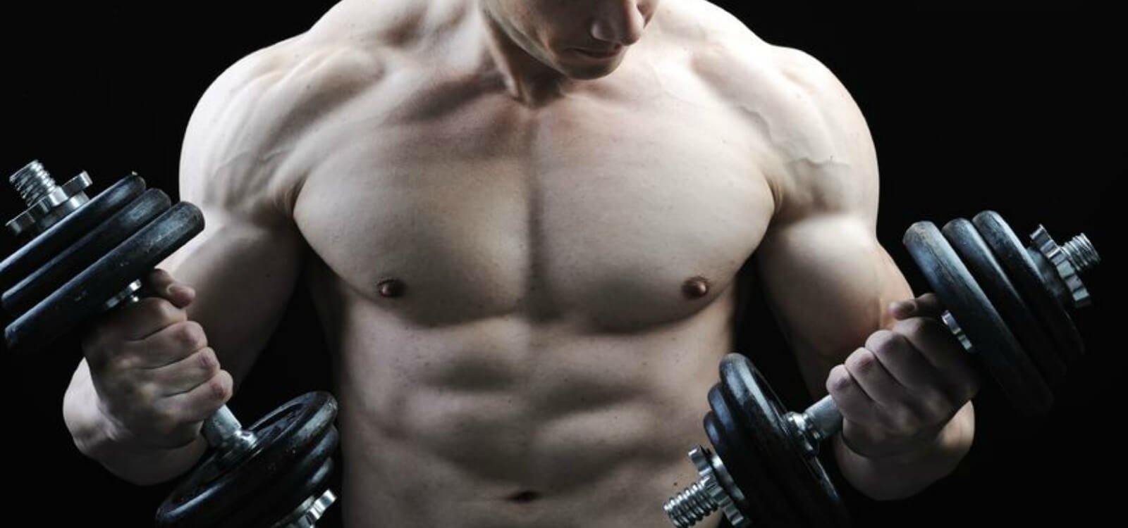 muscle fiber types and training