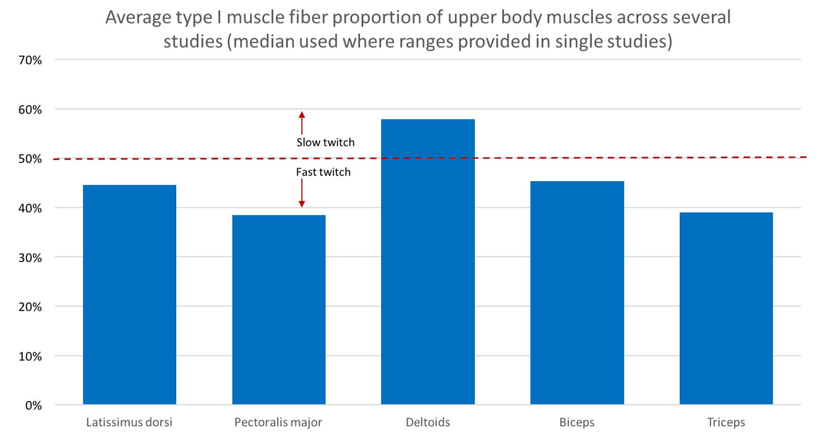 muscle fiber types upper body