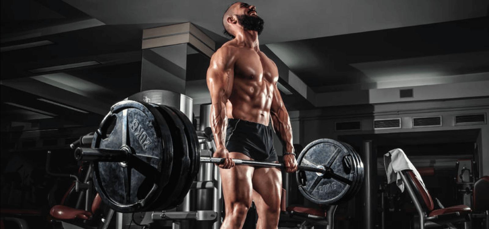 greg nuckols strength training program