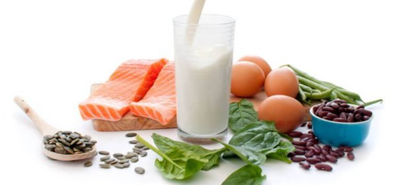 lose weight fast high protein