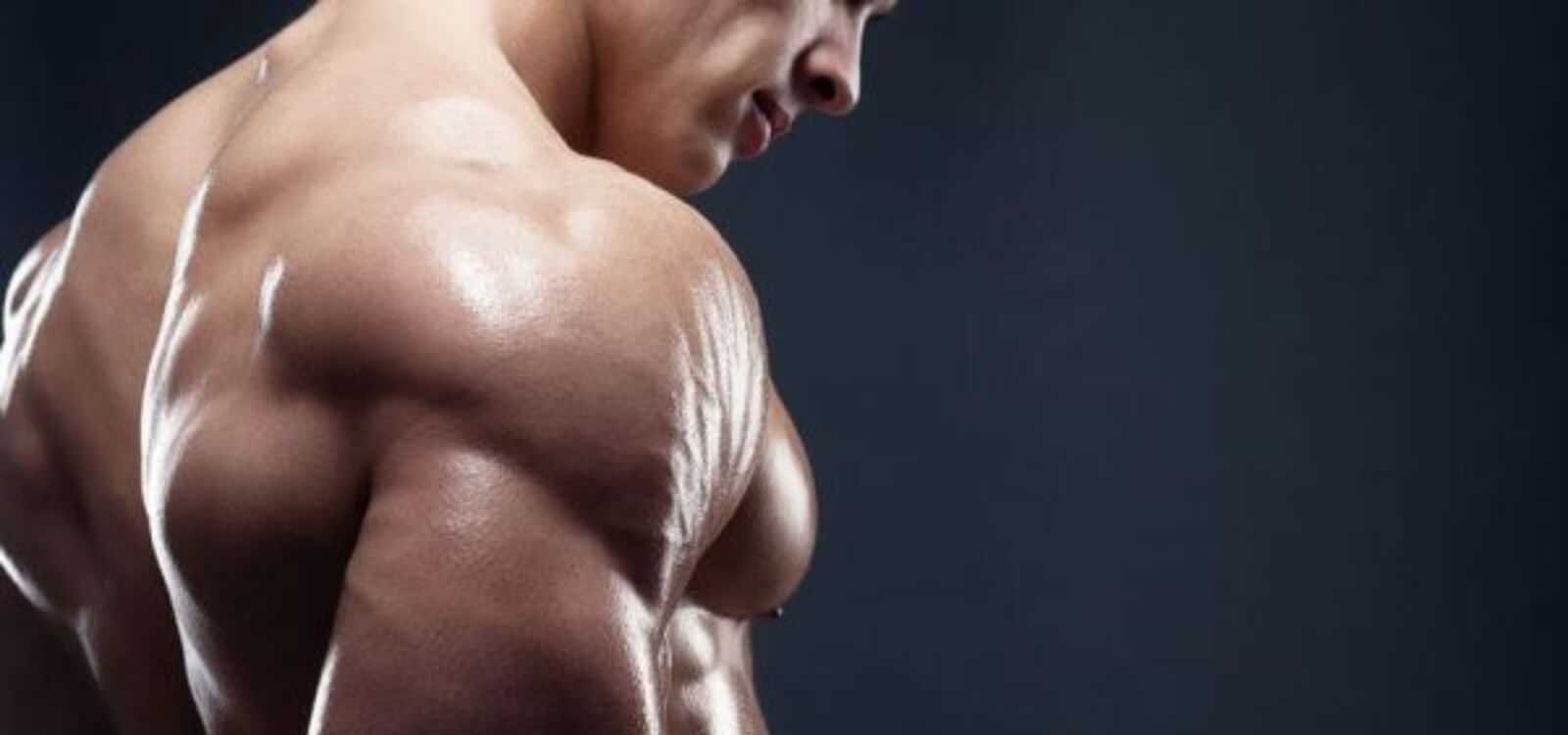 muscle hypertrophy reps