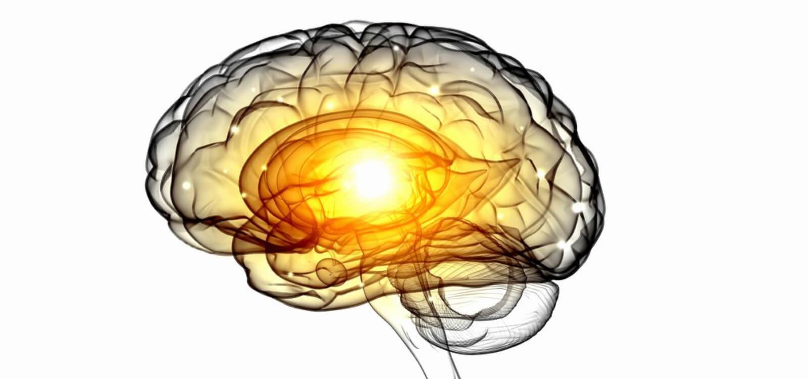 autophagy and neurodegeneration
