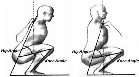 front squat muscles