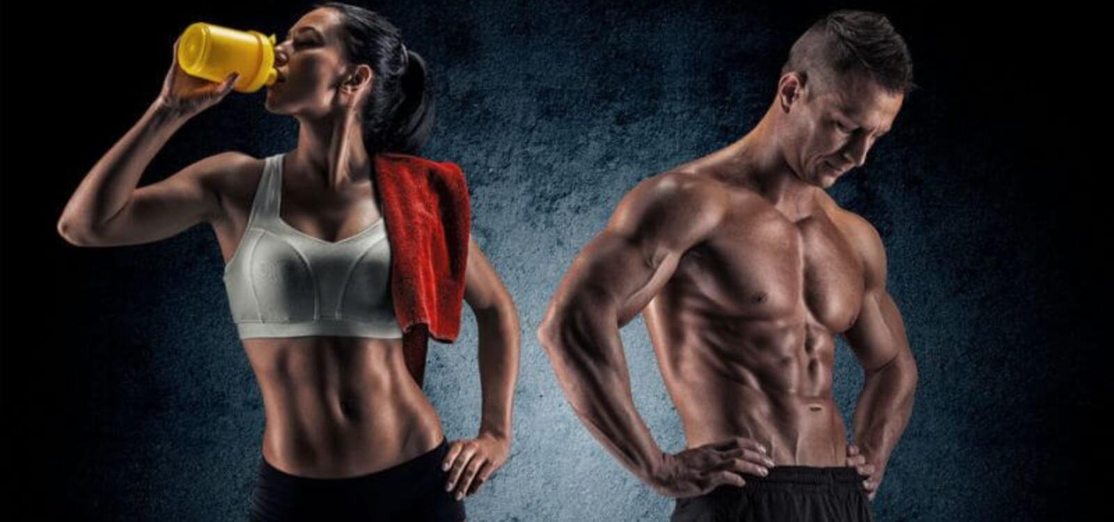 bodyweight workout plans