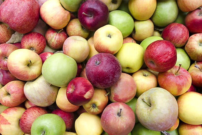 different types apples