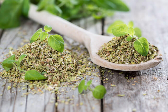oregano dried leaves herb