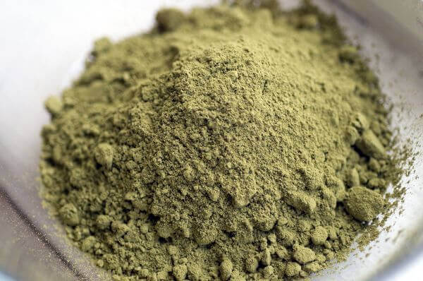 best hemp protein powder