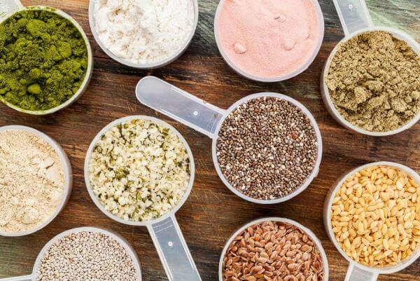best plant protein powder