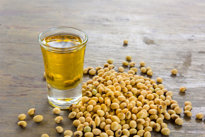 origins of soy lecithin